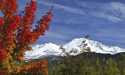 Photograph - Autumn Mountain by Loree Johnson