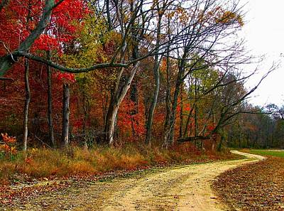 Autumn Scene Photograph - Autumn On Bottomland Road by Julie Dant