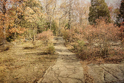 Photograph - Autumn Path by Sandy Keeton