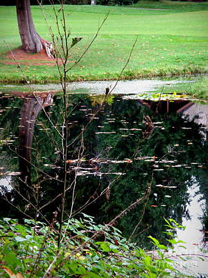 Autumn Photograph - Autumn Pond  2 by Tanya  Searcy