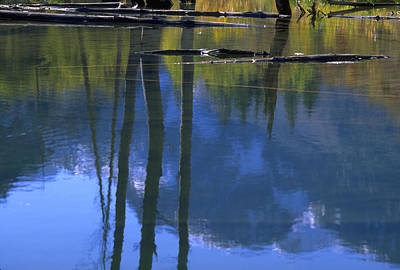 Photograph - Autumn Pond by John Farley