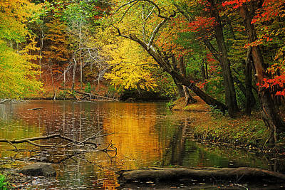 Fall Road Photograph - Autumn Pond by William Carroll