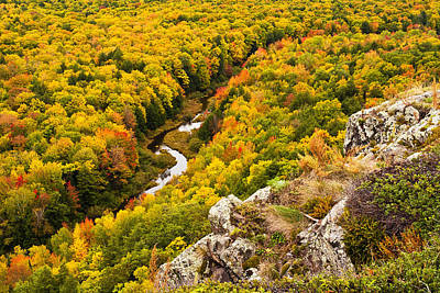 Silver River State Park Photograph - Autumn Precipice by James Marvin Phelps