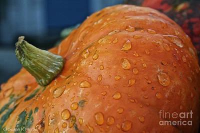 Photograph - Autumn Rain Drops by Susan Herber