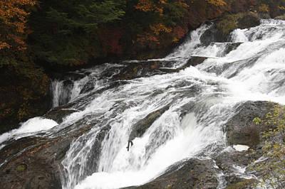 Photograph - Autumn Rapids by Masami Iida