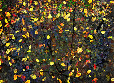 Photograph - Autumn Reconstructed by David Clanton