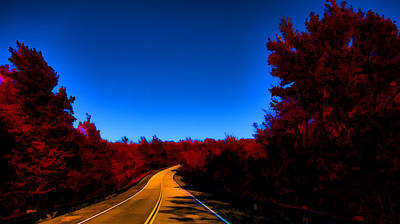 Autumn Red Art Print by Douglas Barnard