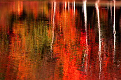 Photograph - Autumn Reflections  by Emanuel Tanjala