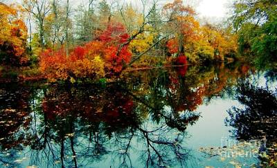 Autumn Reflections Art Print by Holly Martinson