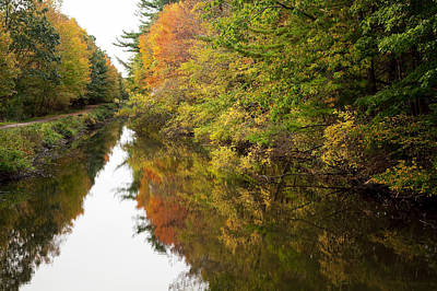 Autumn Reflections Art Print by Jenna Szerlag