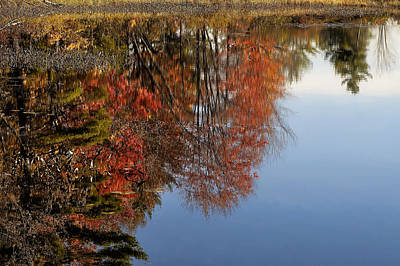Airplane Paintings - Autumn Reflections by Mary Lane