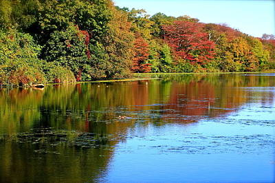Photograph - Autumn Reflections by Susan Elise Shiebler