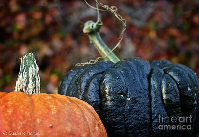 Photograph - Autumn Riches by Susan Herber