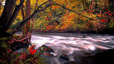 Colourfull Photograph - Autumn River Ripples by Kim Shatwell-Irishphotographer