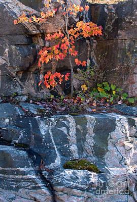 Rock Photograph - Autumn Scene by Les Palenik