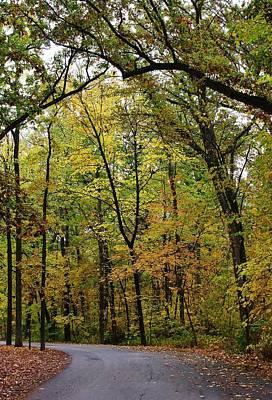 Lowden State Park Photograph - Autumn Sensation by Bruce Bley