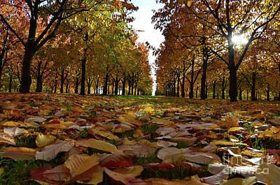 Autumn Sheets Carpet Art Print