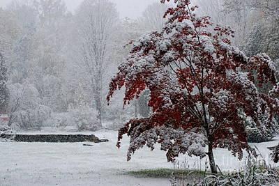 Warren Connecticut Photograph - Autumn Snow I by Andrea Simon