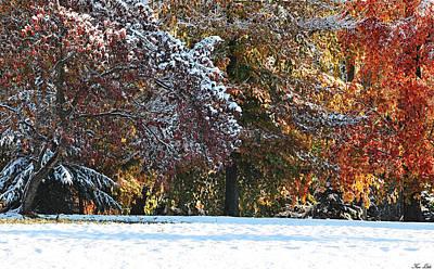 Autumn Snowstorm Art Print by Kimberly Little
