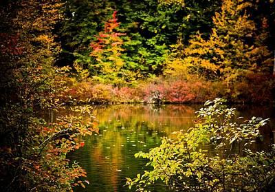 Photograph - Autumn Splendor by Sara Frank