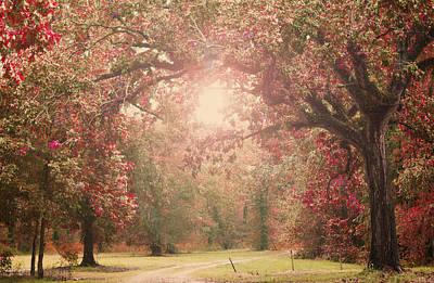 Autumn Splendor Print by Susan Bordelon