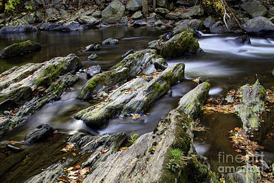 Photograph - Autumn Stream 2 by Dennis Hedberg