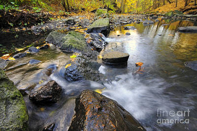 Photograph - Autumn Stream by Charline Xia