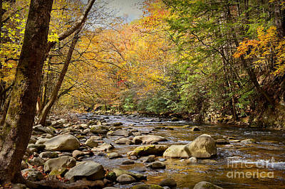 Photograph - Autumn Stream by Cheryl Davis
