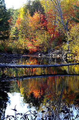 Photograph - Autumn Stream by Douglas Pike
