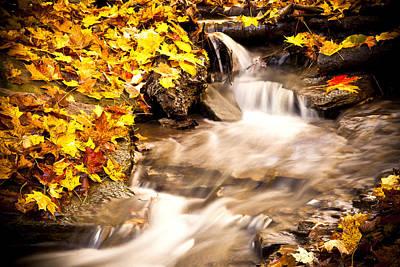 Autumn Stream No 1 Art Print by Kamil Swiatek