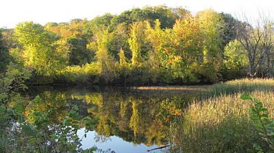 Autumn Sunlight On The Pond Art Print