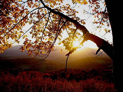 Photograph - Autumn Sunset by Van Corey