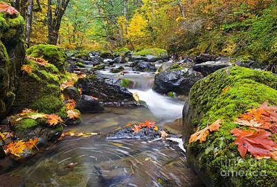 Autumn Swirls Original by Mike  Dawson