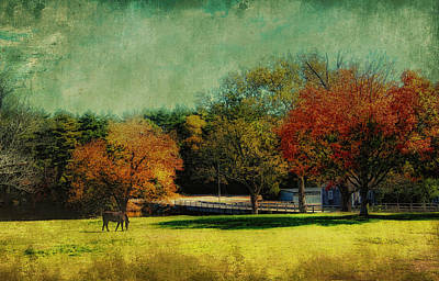 Photograph - Autumn Time by Gina Cormier