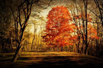 Autumn Trail Art Print by Kathy Jennings