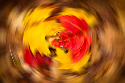 Trippy Photograph - Autumn Trance by Matt Dobson
