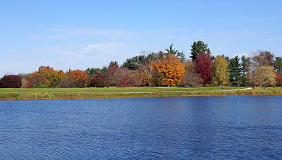 Photograph - Autumn Trees By The Lake by Sandy Keeton