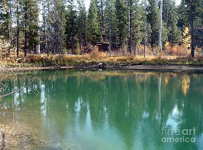 Photograph - Autumn View by Erica Hanel