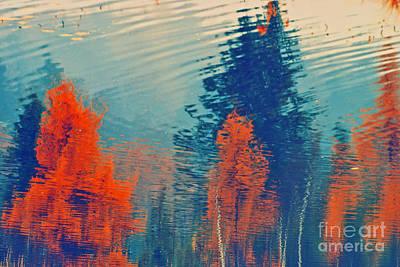 Photograph - Autumn Vision by Aimelle