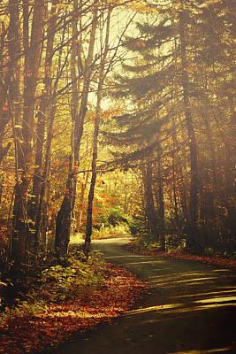 Autumn Walk Art Print by Gary Smith