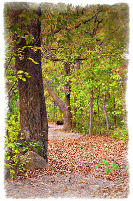 Photograph - Autumn Walk - Impressions by Ricky Barnard