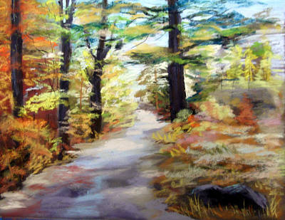 Autumn Walk In The Woods Art Print by Trudy Morris
