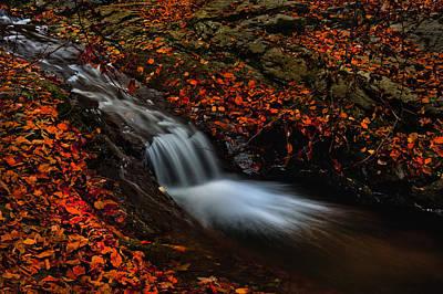 Autumn Waterfall Art Print by Irinel Cirlanaru