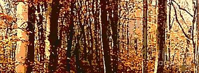 Photograph - Autumn Woods I by Angela L Walker