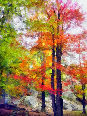 Fall Foliage Mixed Media - Autumnal Rainbow by Angelina Vick