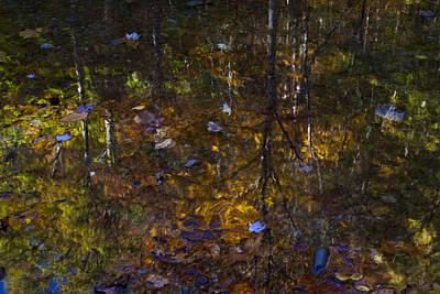 Autumnal Reflection Art Print by Jim Neumann