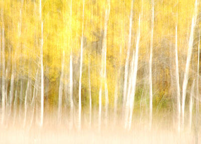 Autumns Abstract Art Print by Optical Playground By MP Ray