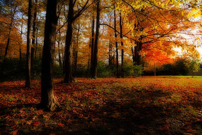 Photograph - Autumn's Ambience by Anthony Rego