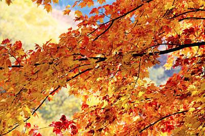 Autumns Gold Great Smoky Mountains Art Print