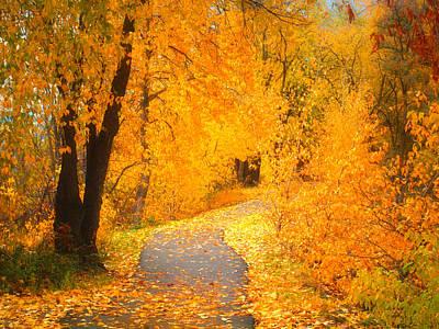 Photograph - Autumn's Golden Corner by Tara Turner